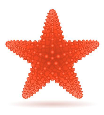 illustrazione vettoriale stelle marine