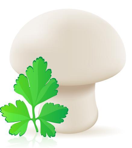 illustrazione vettoriale di funghi champignon