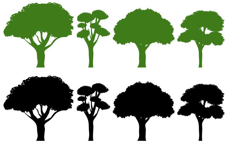 Set di albero diverso vettore