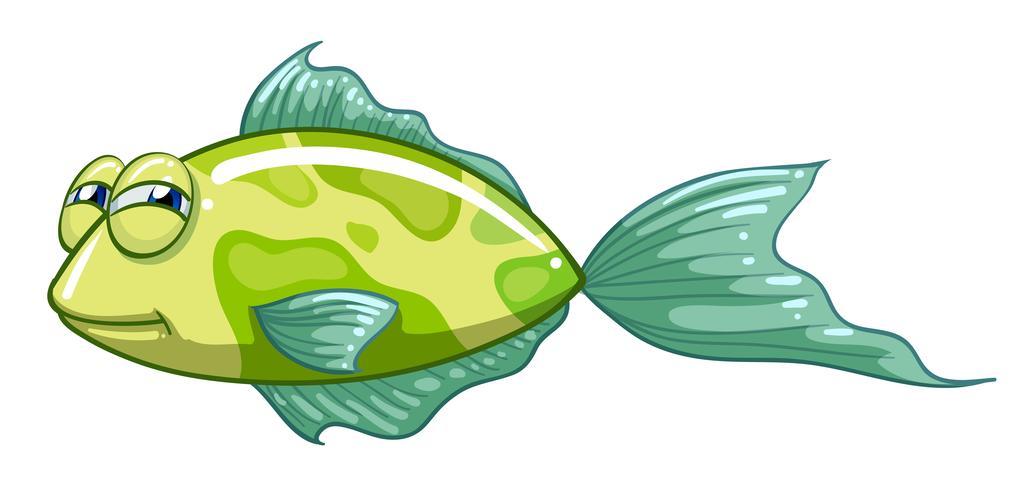 Un pesce verde vettore