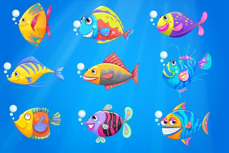 Un gruppo di bellissimi pesci sotto il mare vettore