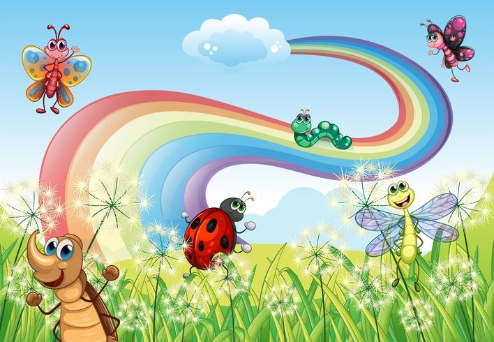 Diversi insetti in cima alla collina con un arcobaleno vettore