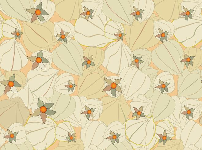 Fondo senza cuciture del Physalis del modello di caduta floreale. Trama giardino fiorito vettore
