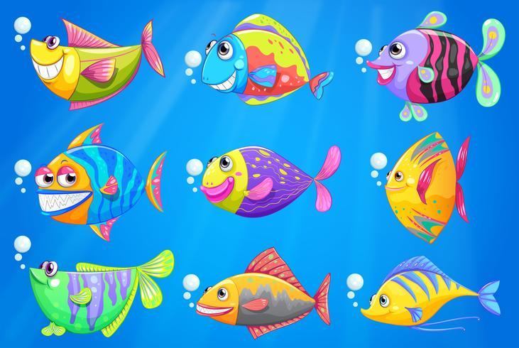Nove pesci colorati sotto il mare vettore