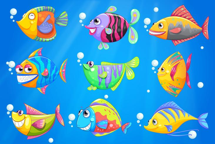 Un oceano con nove pesci colorati vettore