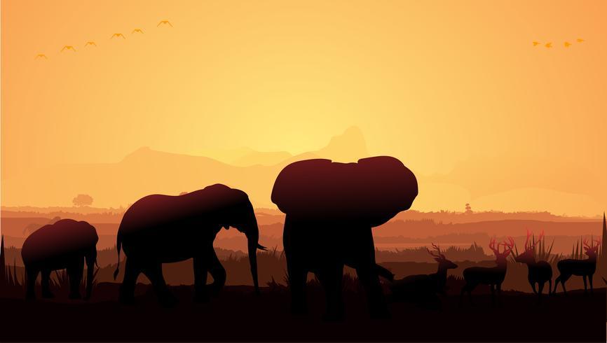 sagoma di elefante vettore