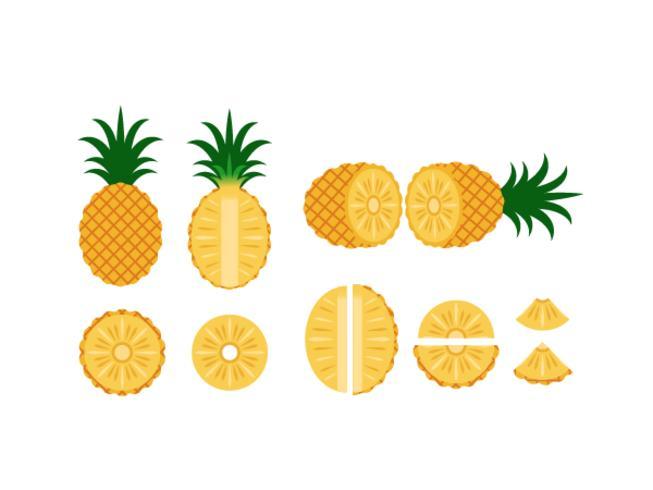 Set di ananas isolato su sfondo bianco - illustrazione vettoriale