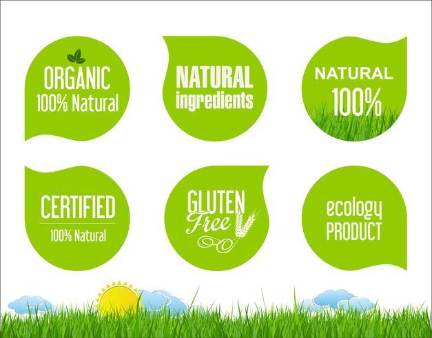 Eco Vintage Labels Bio template set Ecologia Design retrò vettore