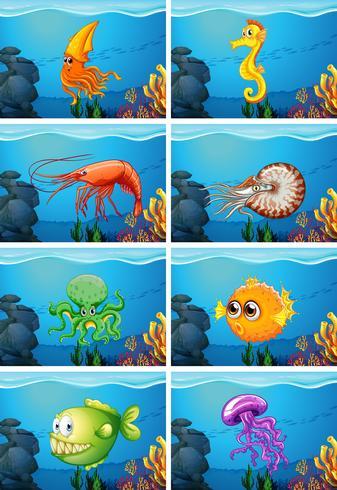 Scene con animali marini sotto il mare vettore