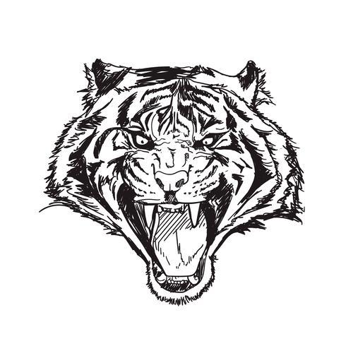 illustrazione di vettore di linea arte tigre