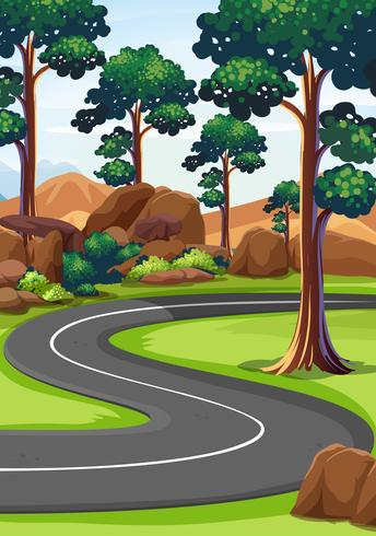 Strada curva nel bosco vettore