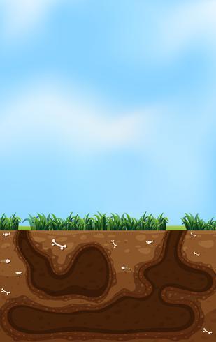 Un buco sotterraneo per animali vettore