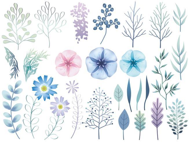 Insieme di elementi botanici assortiti isolato su uno sfondo bianco. vettore