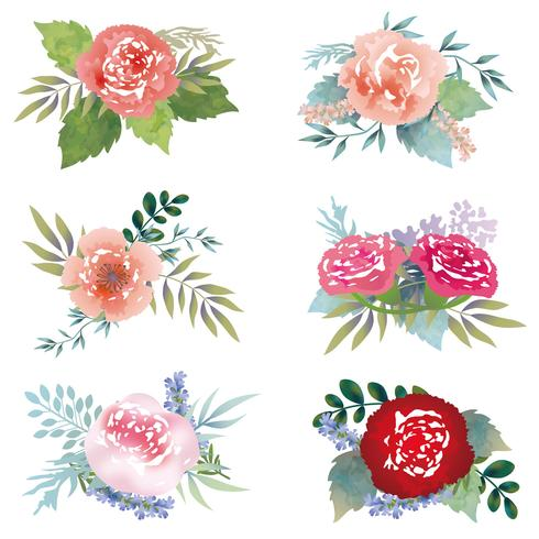 Set di elementi floreali assortiti isolato su uno sfondo bianco. vettore