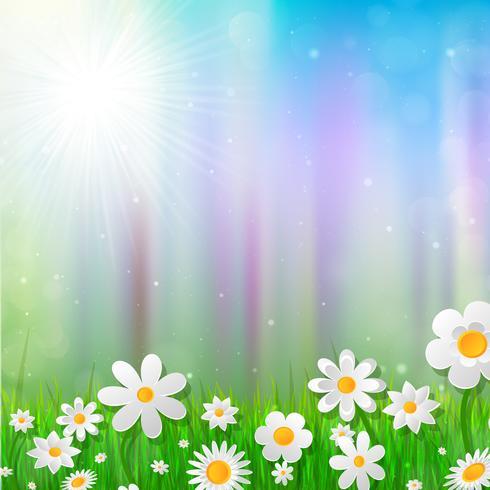 Priorità bassa della sorgente con i fiori bianchi nell'erba. vettore