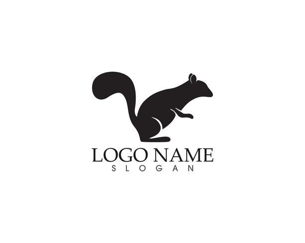 logo e simboli dello scoiattolo vettore