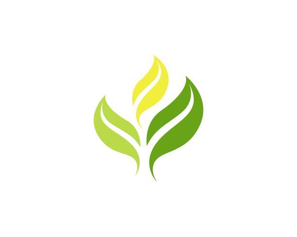 foglia verde natura logo e simbolo modello vettoriale ..