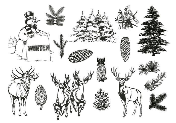 Foresta naturale e pacchetto di vettore di inverno