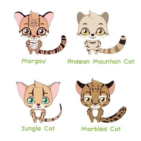 Insieme di varie specie di gatto selvatico vettore