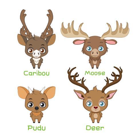Set di nuove specie di cervo del mondo vettore