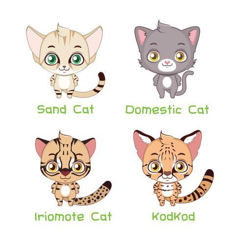 Set di specie di gatto di piccole dimensioni vettore