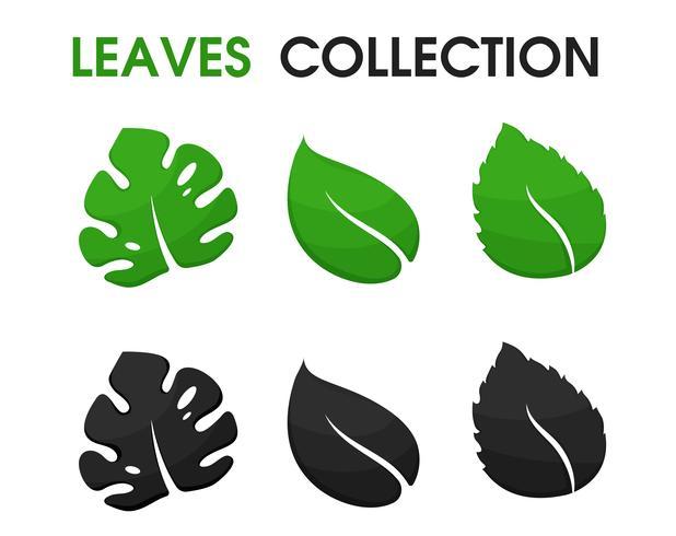 Belle forme di foglie e ombre vettore