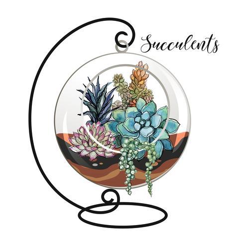 Succulente in un acquario decorativo per fiori. Grafica e macchie acquerello. Vettore. vettore