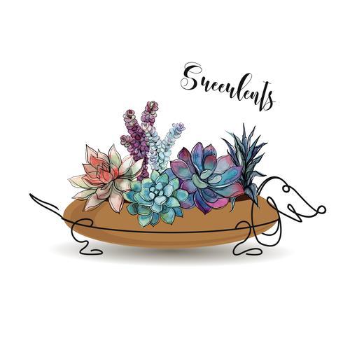 Piante grasse. Composizione di fiori in un vaso di fiori sotto forma di un cane bassotto. Grafica. Acquerello. Vettore. vettore