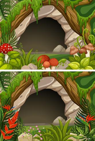 Due scene di grotte e fiori vettore