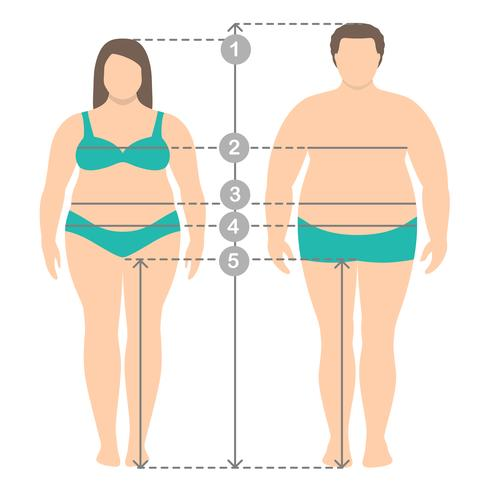 Illustrazione di sovrappeso uomo e donna in piena lunghezza con linee di misurazione dei parametri del corpo. Abiti uomo e donna più misure di taglia. Misure e proporzioni del corpo umano. vettore