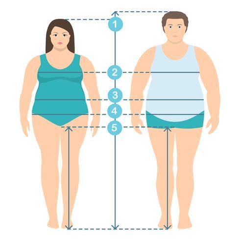 Illistration piano stile di uomo e donna in sovrappeso in tutta la sua lunghezza con le linee di misurazione dei parametri del corpo. Abiti uomo e donna più misure di taglia. Misure e proporzioni del corpo umano. vettore