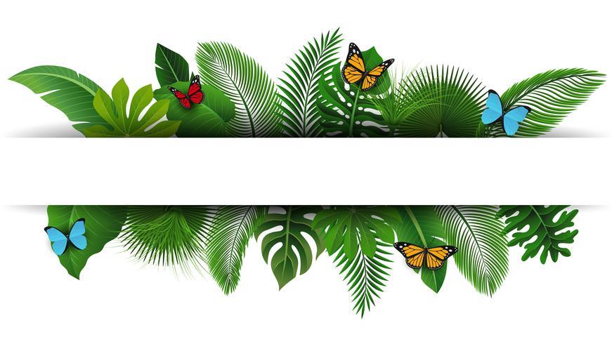 Iscriviti con lo spazio del testo di foglie tropicali e farfalle. Adatto a concetto di natura, vacanze e vacanze estive. Illustrazione vettoriale