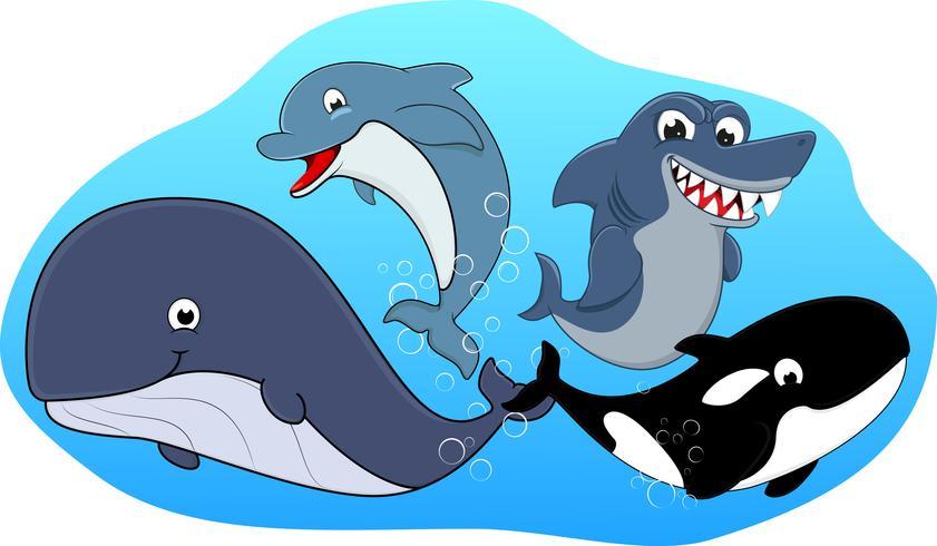 Set di mammiferi marini vettore
