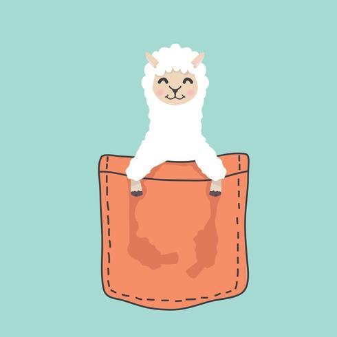 Lama in alpaca testa di testa all'interno della tasca vettore