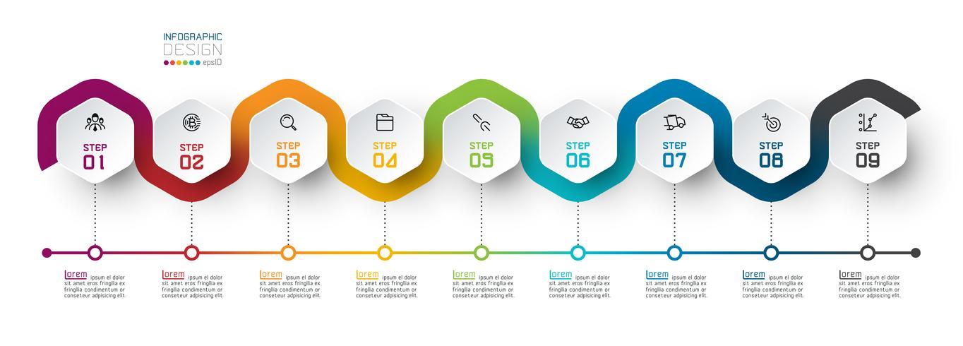 Etichetta esagono con infografica collegata a linee colorate. vettore