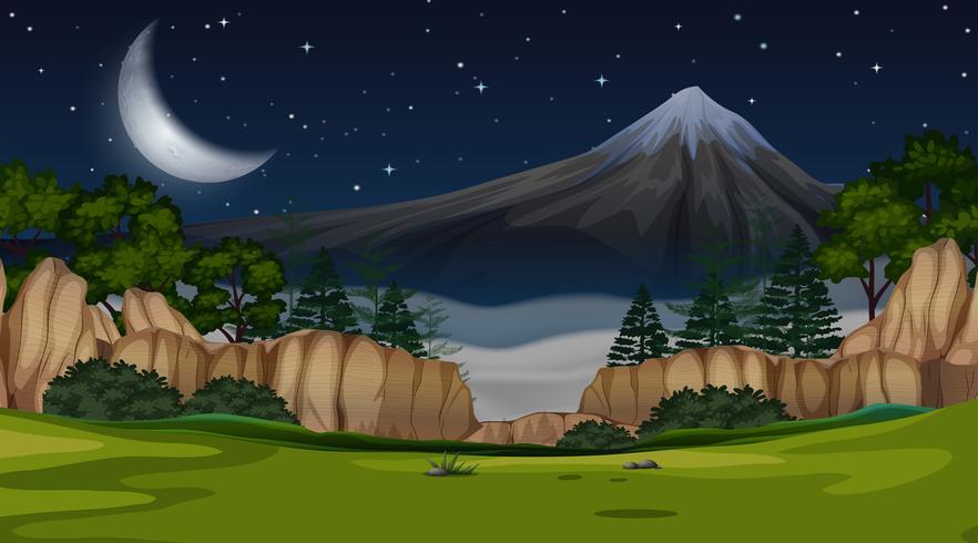 Una scena di montagna vista di notte vettore