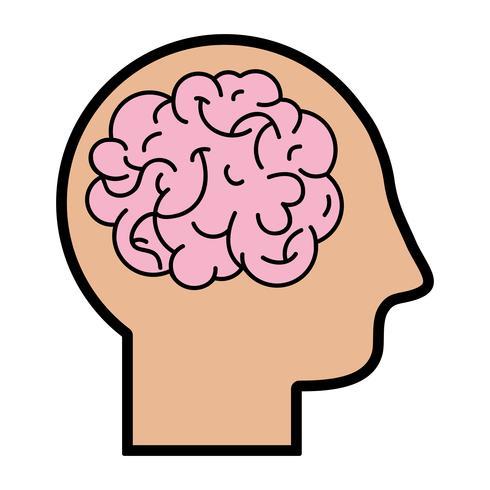 sagoma uomo con disegno del cervello di anatomia vettore