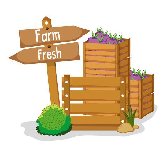 Prodotti freschi di fattoria vettore