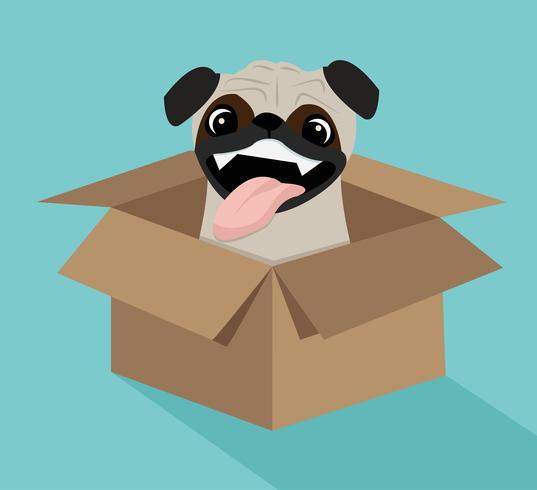 Simpatico cane nella scatola vettore