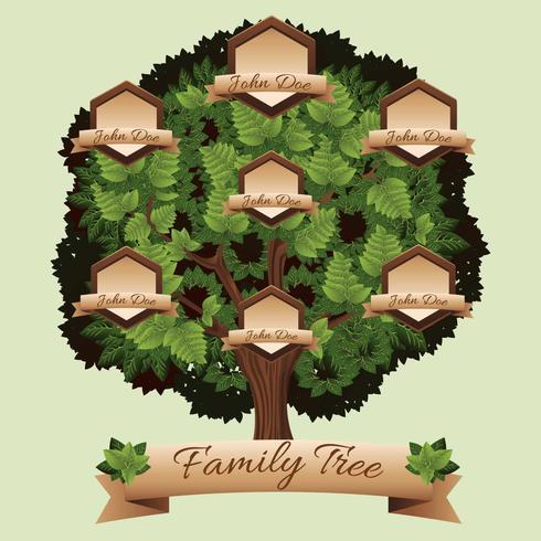albero genealogico vettore