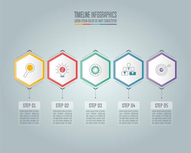 Concetto di business infografica con 5 opzioni. vettore
