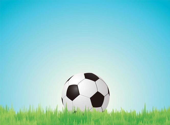 Calcio vettore