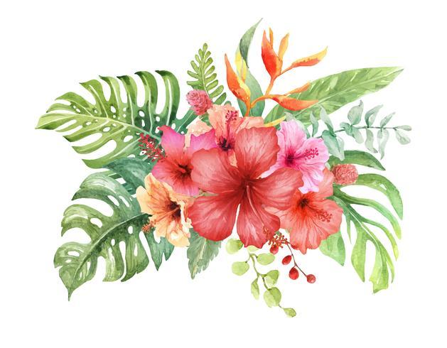 Elementi dell'acquerello bouquet di ibisco. vettore