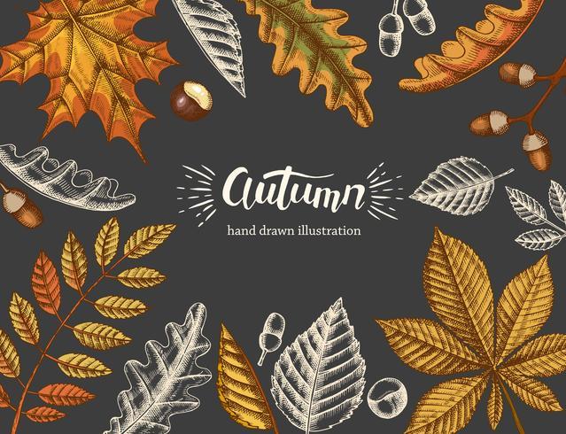 Priorità bassa di autunno dell'annata con doodle disegnato a mano e foglie colorate su fondo nero vettore