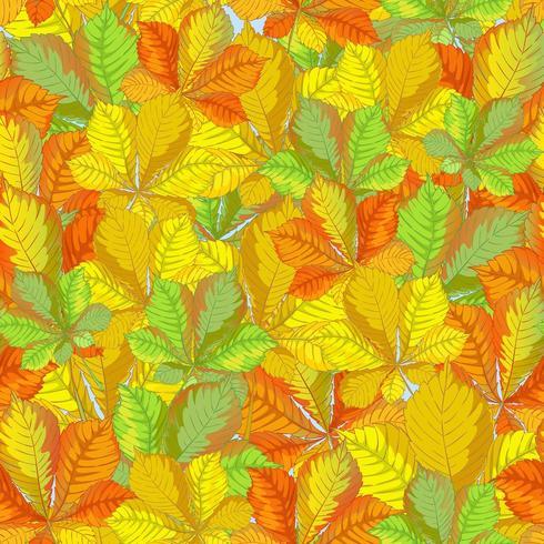 Modello di autunno senza cuciture con le foglie cadute della castagna. vettore