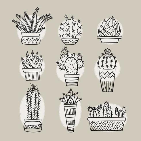 Scarabocchi disegnati a mano di cactus e piante grasse vettore