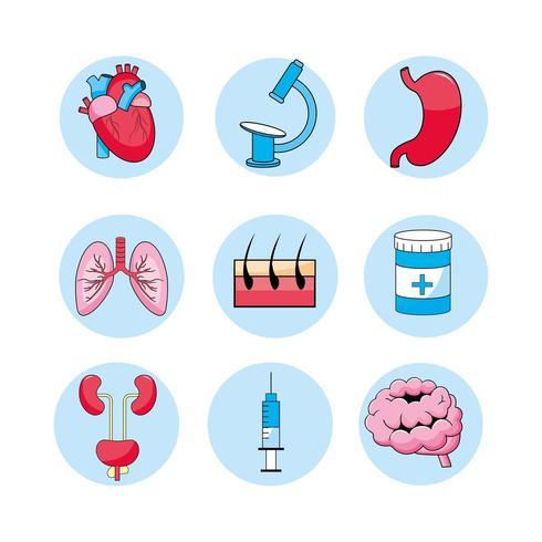set di icone di consulenza medica, trattamento, diagnosi e malattia vettore