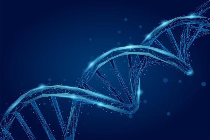 Spirale dell'elica della molecola di DNA vettore
