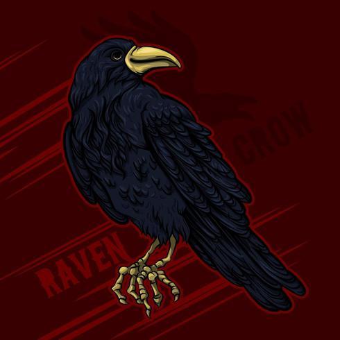 Corvo nero o corvo Halloween vettore