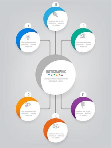 Modello di etichette di affari infografica vettore